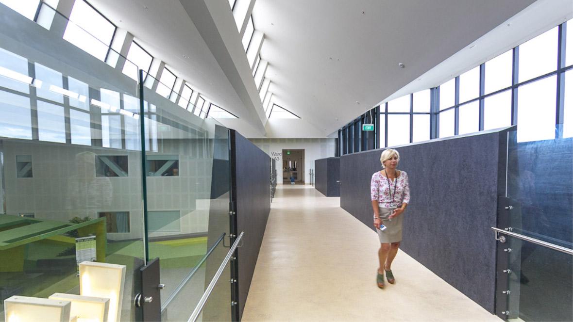 Waikato Hospital