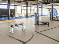 Marmoleum Sport, Gym