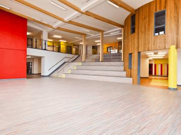 Temple Carrig-skolan