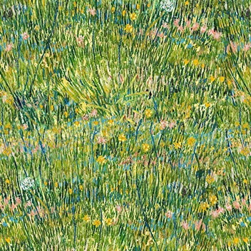 Flotex van Gogh patch of grass