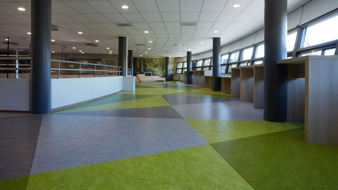 Helen Parkhurstschool