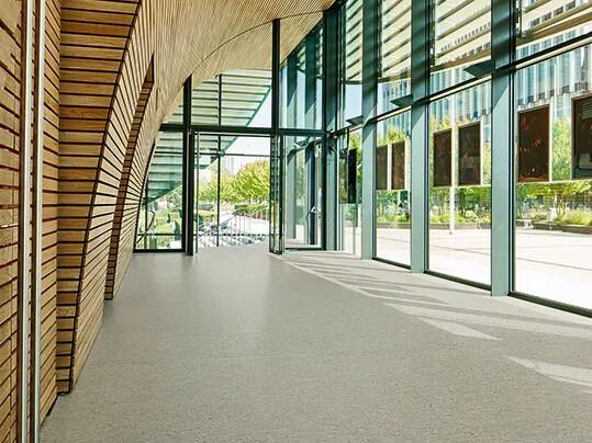 Marmoleum Terra 5802 in school entrance