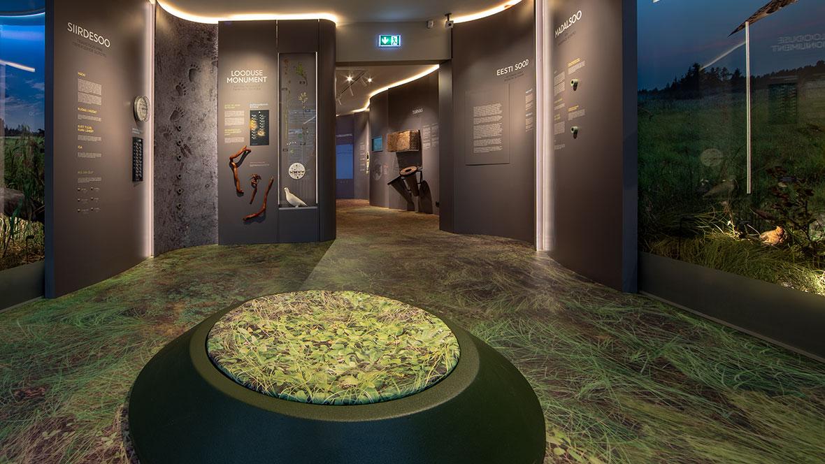 Estonian museum of natural history Estonia