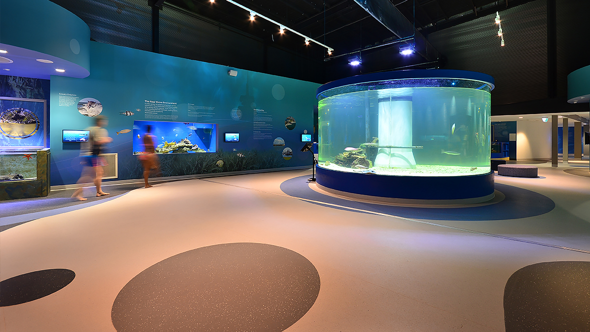 Dolphin Discovery Centre - Western Australia