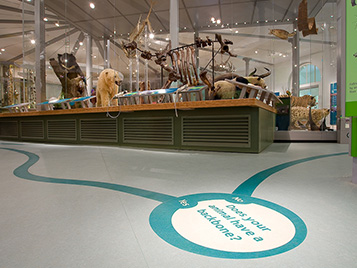 Leeds City Museum UK | Archidea 39 | Marmoleum Aquajet