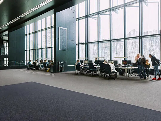 Flotex Colour floor - 545019, 545021
