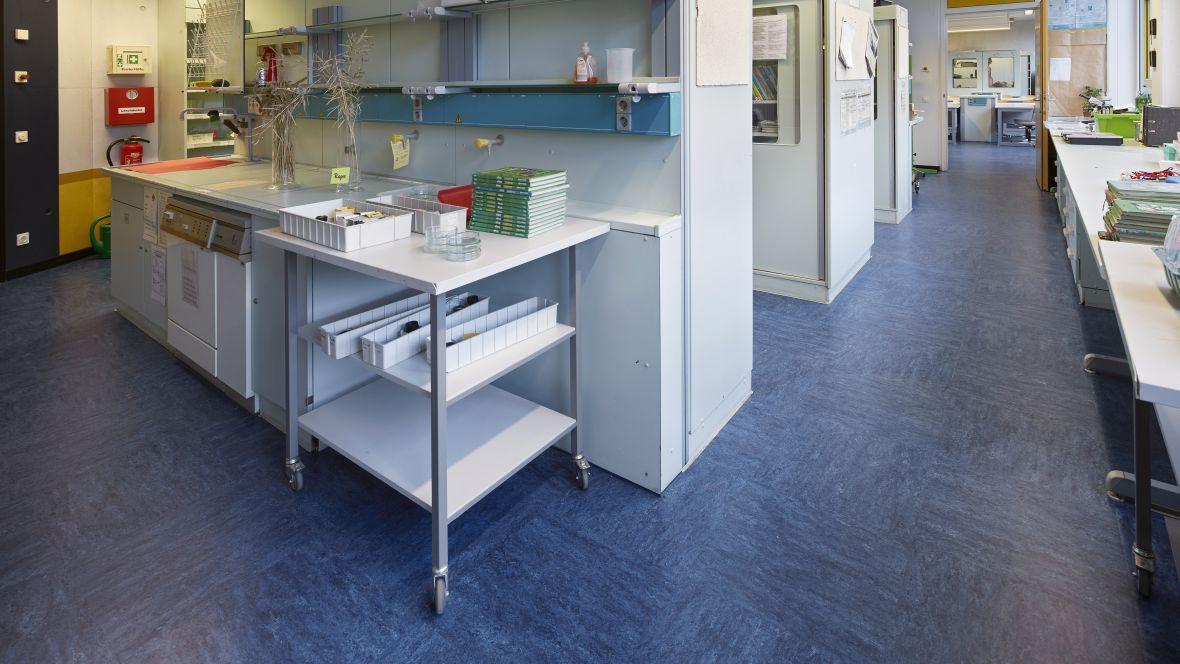 Gesamtschule Brühl - Europaschule Brühl Regale auf blau-gemusterten Boden – Forbo Linoleum Modular