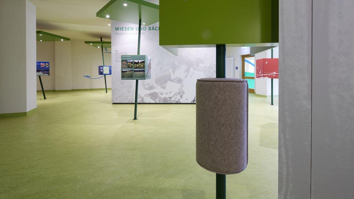UNESCO-Biosphärenreservat Thüringer Wald Ausstellungsraum mit grünem Boden – Forbo Marmoleum Real