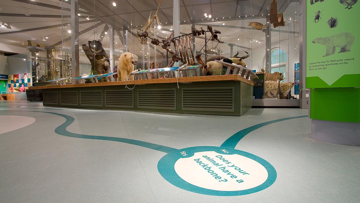 Leeds_City_Museum