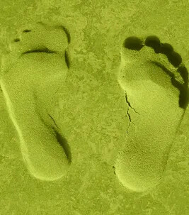 Footprint Web Icon