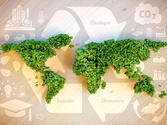 Nachhaltigkeit: Das Zusammenspiel von Ökologie, Ökonomie und Sozialem