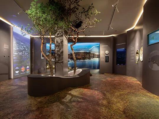 Museo Estonio de Historia Natural - Eternal de impresión digital