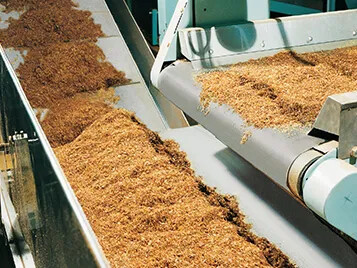 Tobacco processing with Transilon conveyor belt