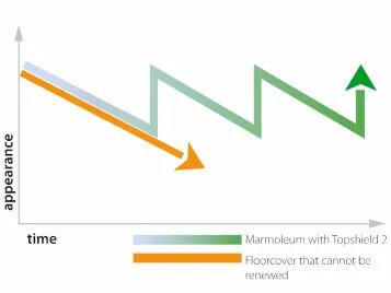 Topshield2 graph