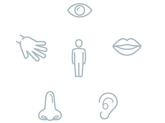 Wohlbefinden - Die fünf Sinne