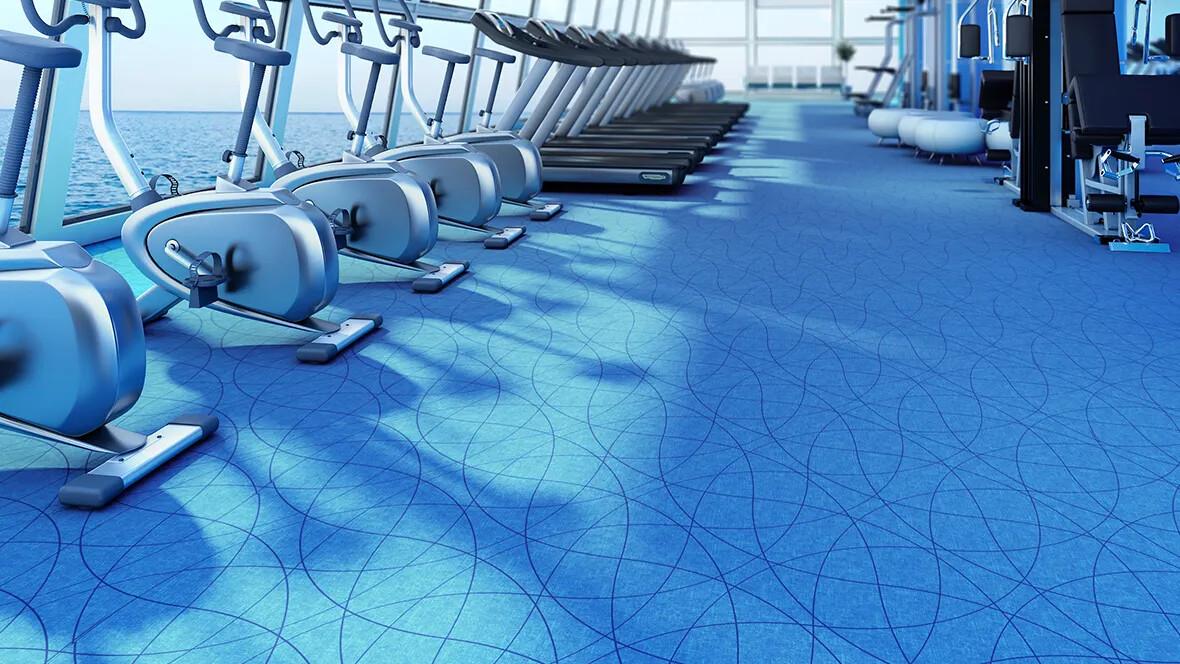 Flotex Vision FR in gym