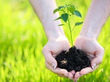 Forbo et l'environnement