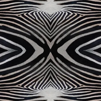 Flotex Vision flocked flooring - Zebra