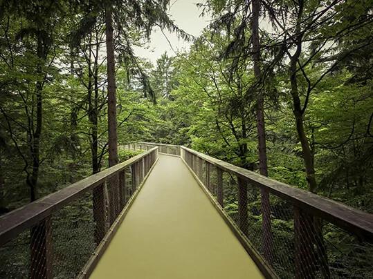 Marmoleum green road 3265