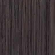 3577 petrified wood
