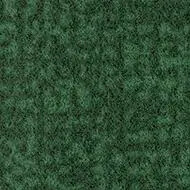 s246022 Metro evergreen