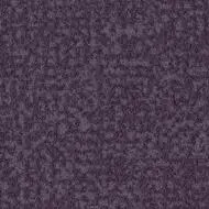 s246016 grape