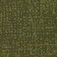 s246021 moss