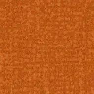 s246025 Metro tangerine