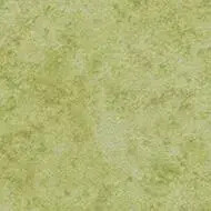 t590014 Calgary lime