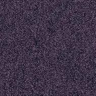 1817 violetta