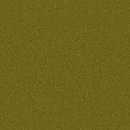 900208 olive