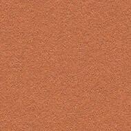 2207 cinnamon bark