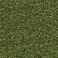 2608 fresh grass
