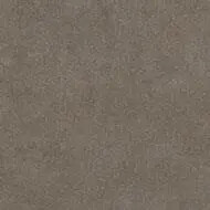1506 taupe sand