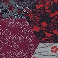 200003 Ecosystems kimono red