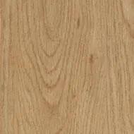 60065 honey elegant oak