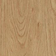 60065DR7 honey elegant oak